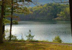 Lake in Spring